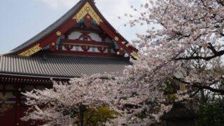 【十三参りぎゃらりー】浅草寺2019.04|Asakusa